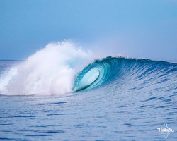 Сёрф-сафари на Мальдивах, май 2021