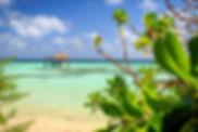 серф кэмп на Мальдивах
