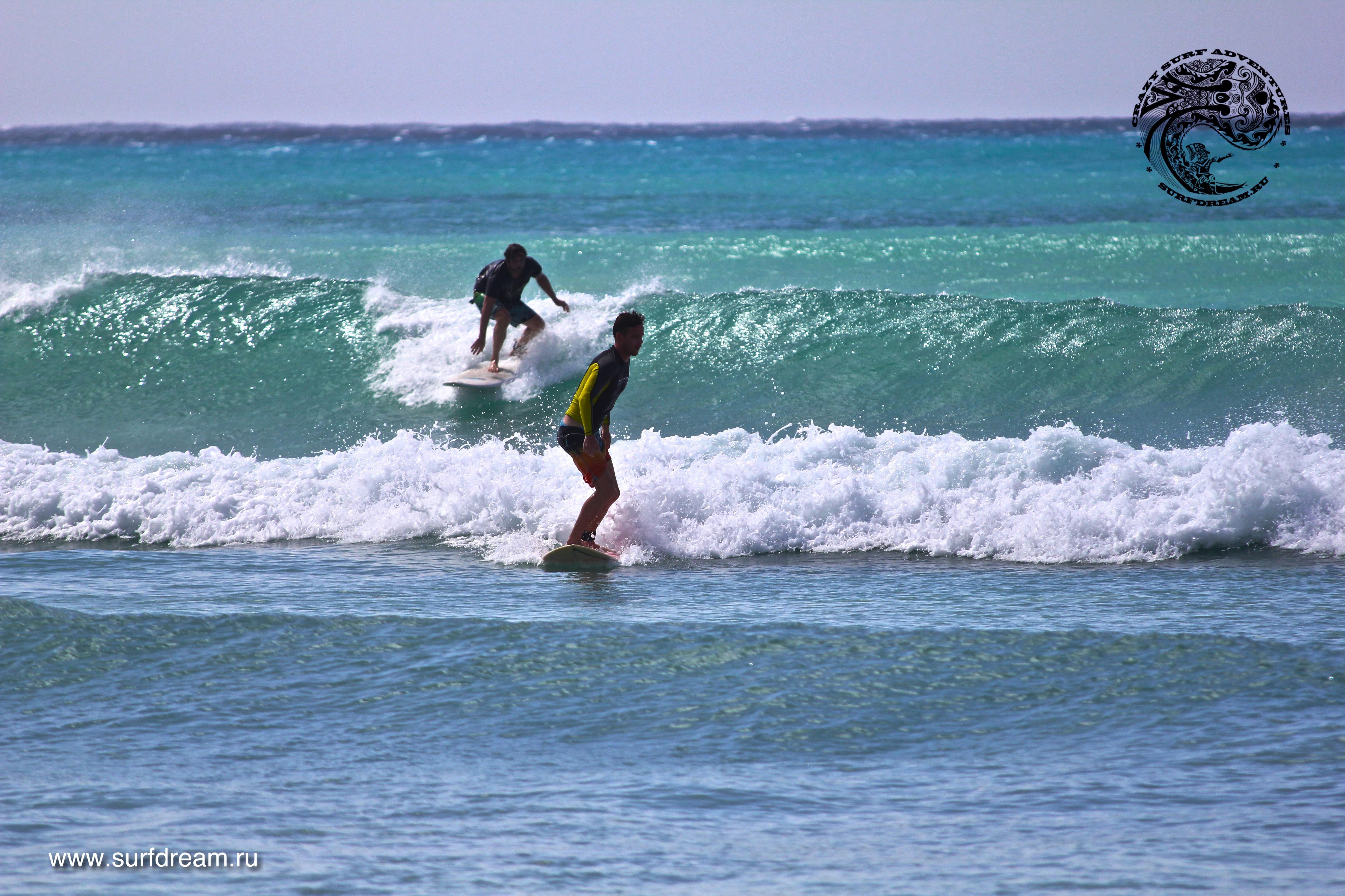 обучение серфингу на Барбадосе