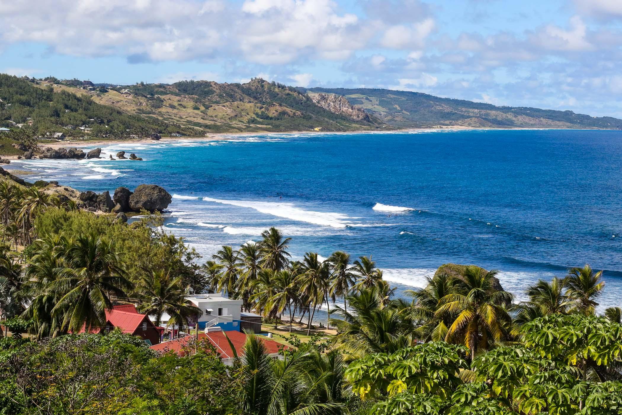 Новогодний сёрф-кэмп на Барбадосе 2020