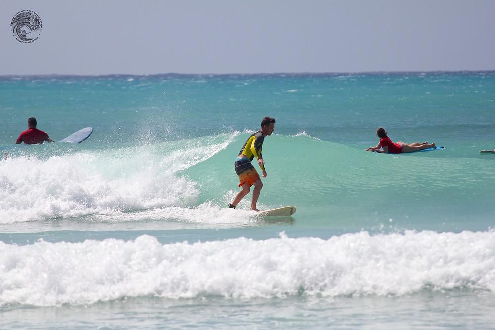 серф-кэмп на Барбадосе
