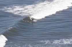 серфинг Америка