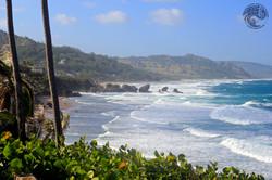 серфинг на Барбадосе