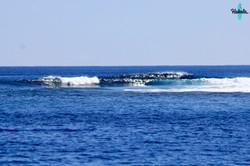 серф спот на Мальдивах