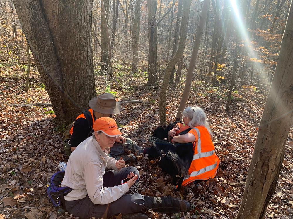3 handlers taking a break in the woods