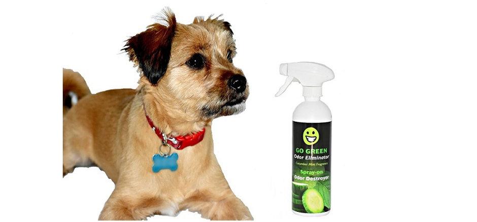 Odor Eliminator with Dog.jpg