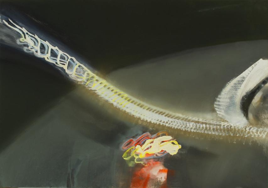 Light spine