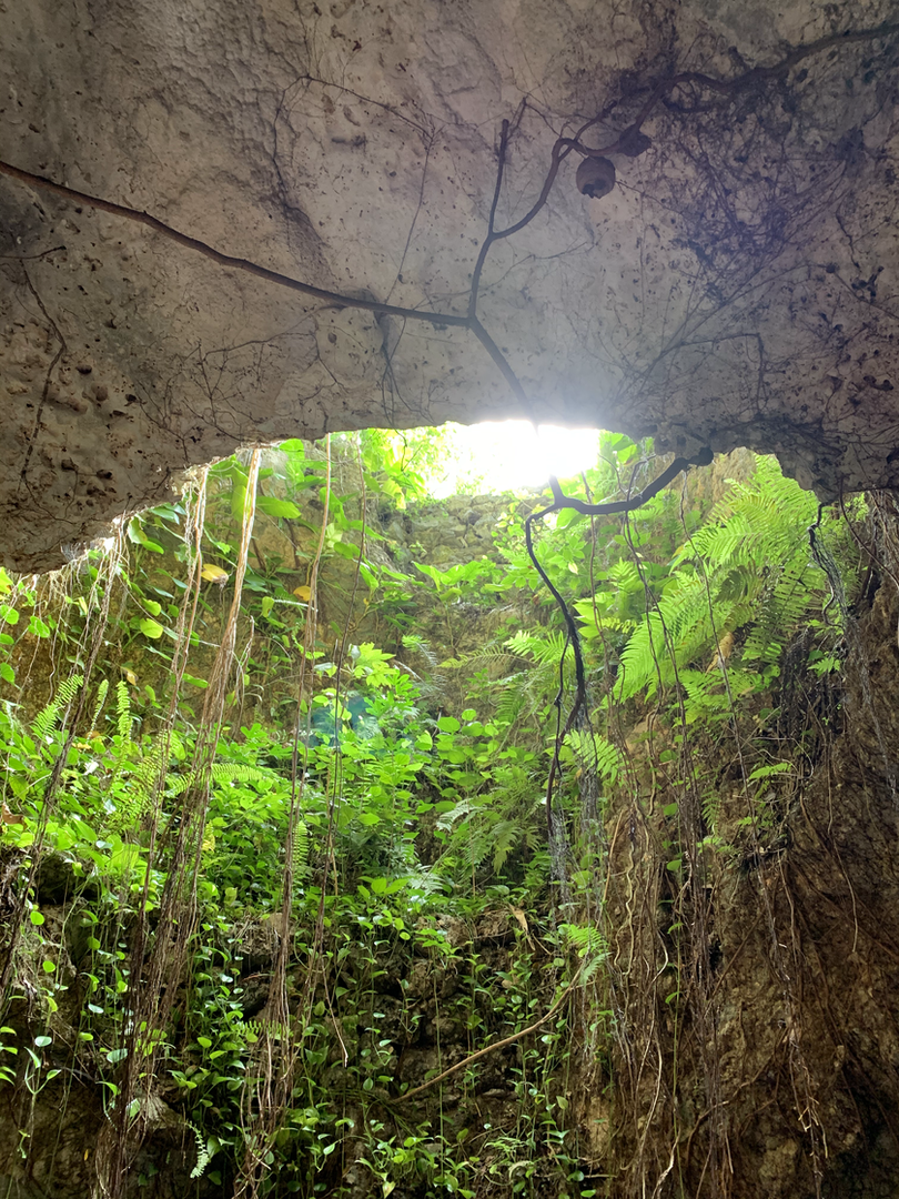 Cenotes = energetic bliss