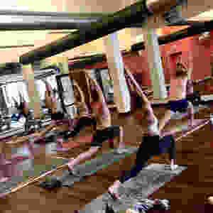 Mary Jarvis Yoga Shapeshifting
