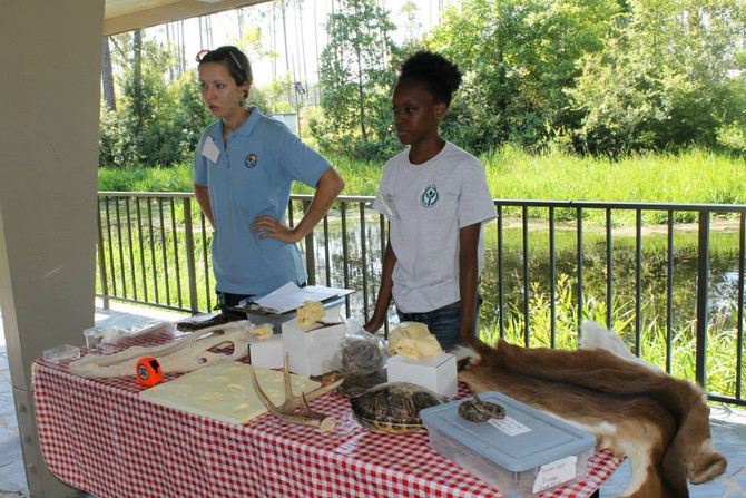 T4T Launches a New Internship Program on National Wildlife Refuges