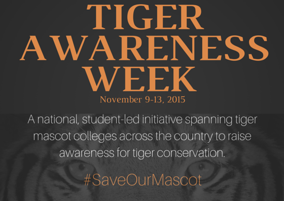 Celebrate Tiger Awareness Week with Tigers for Tigers!
