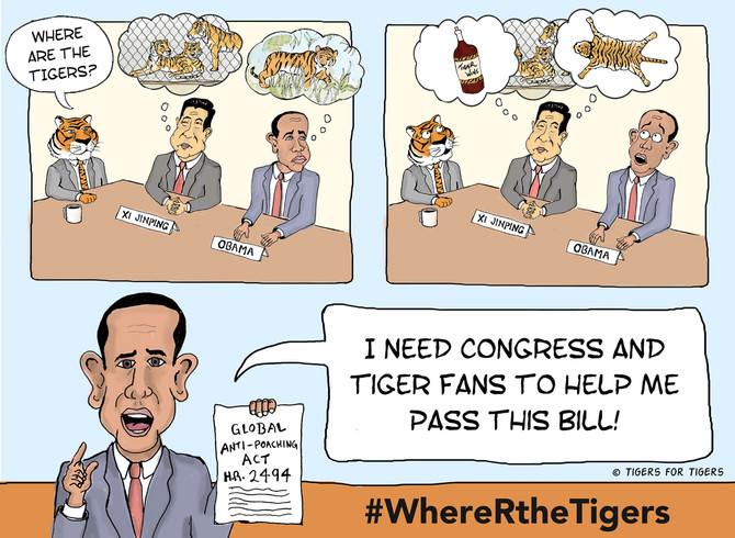 Celebrate Global Tiger Day #WhereRtheTigers?
