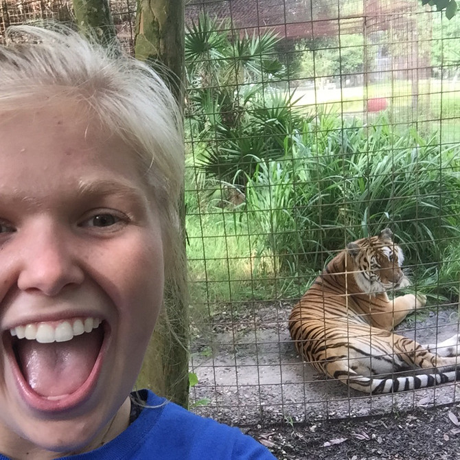 Member Spotlight: Diane Dotson of Clemson Tigers for Tigers Interns at Big Cat Rescue