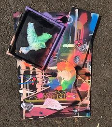 Bird Thursday Collage