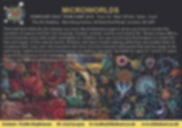KDA FEB 18-19th Microworlds.jpg