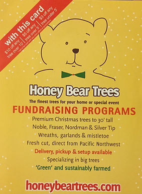 Honey Bear Trees Coupon tall large huge lot tree trees redwood bay area