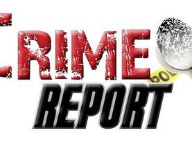 Area Crime Report