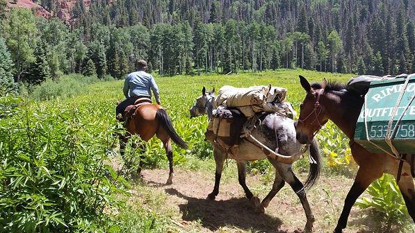mountain pack trip.jpg