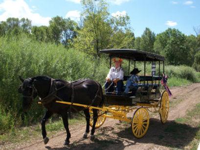 Carriage Rides near me.jpg
