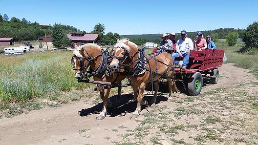 wagon ride durango.jpg
