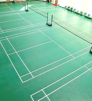 badminton court mat.jpg
