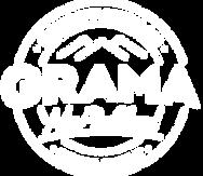 logo_slide_noproblem.png