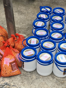 Safe seed storage in Buena Milpa