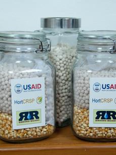 USAID Drying Beads