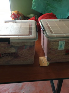 Seed storage with drying beads in Buena Milpa, Guatemala
