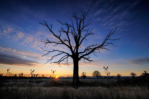 Bedfordshire Sunrise