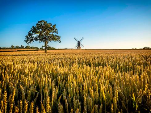 Stevington, Bedfordshire