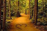 Path of Love.jpg