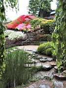 Azaleas_at_Albert_Kahn_Garden.jpeg