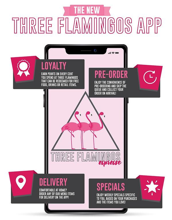 TFE-App-Launch-IG-Story_edited.jpg