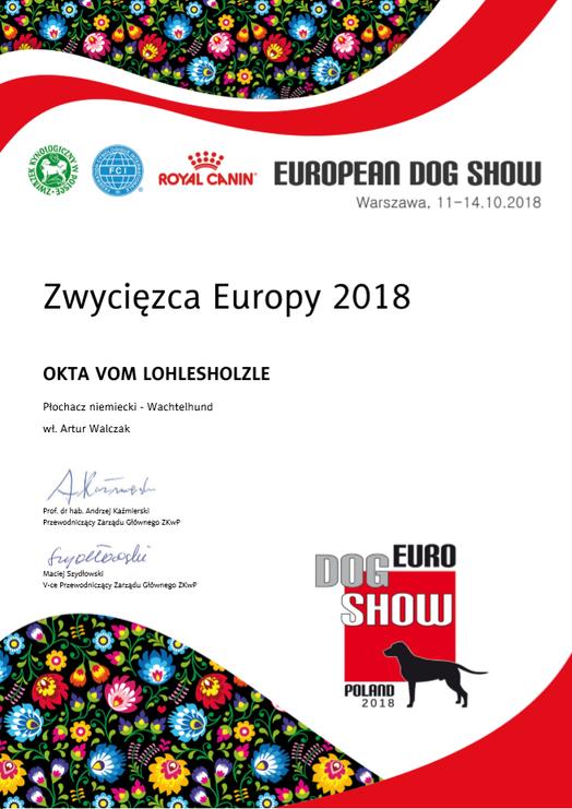 Wystawa Europejska
