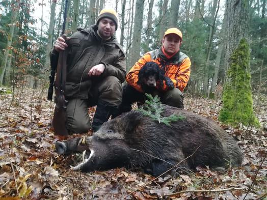 Ostatnie polowania / Last huntings