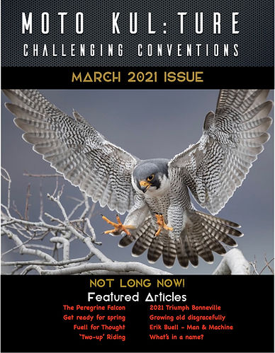 March2021Cover2.jpg