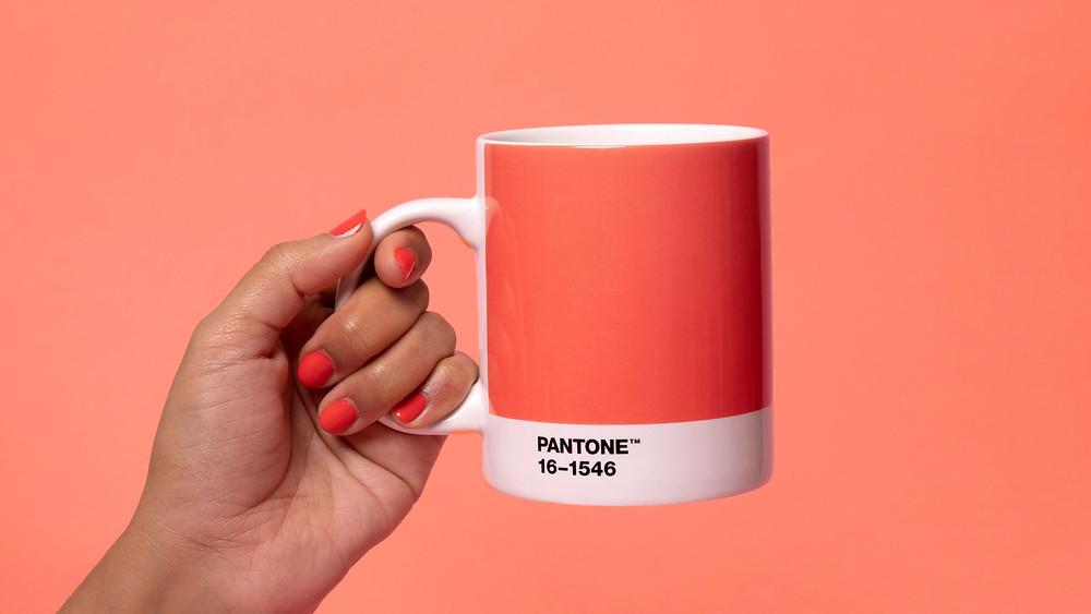 PANTONE 16-1546| Коралловый цвет: 5 советов по декорированию интерьера  в трендовой палитре|блог senko architects/ дизайн студия украина/ дизайн бюро киев