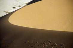 dune courbe marron + buissons horz copie