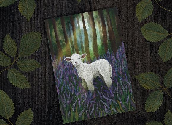 Artist Rosie DORE - Cards