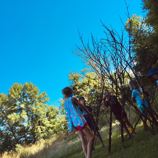 Waseca Art Center - Summer Art Camp 2020