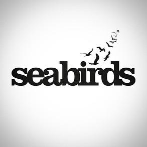 Darkside The Pink Floyd Show / Seabirds