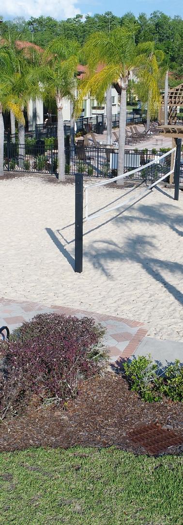 Bella Vida Volleyball.jpg