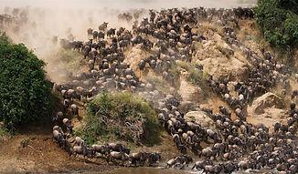 AFRICA PROGRAMA SRTA CALDERON