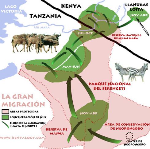 Kenia y Tanzania + Extensión a Sudáfrica y Cataratas Victoria