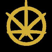 Logo copSy.png
