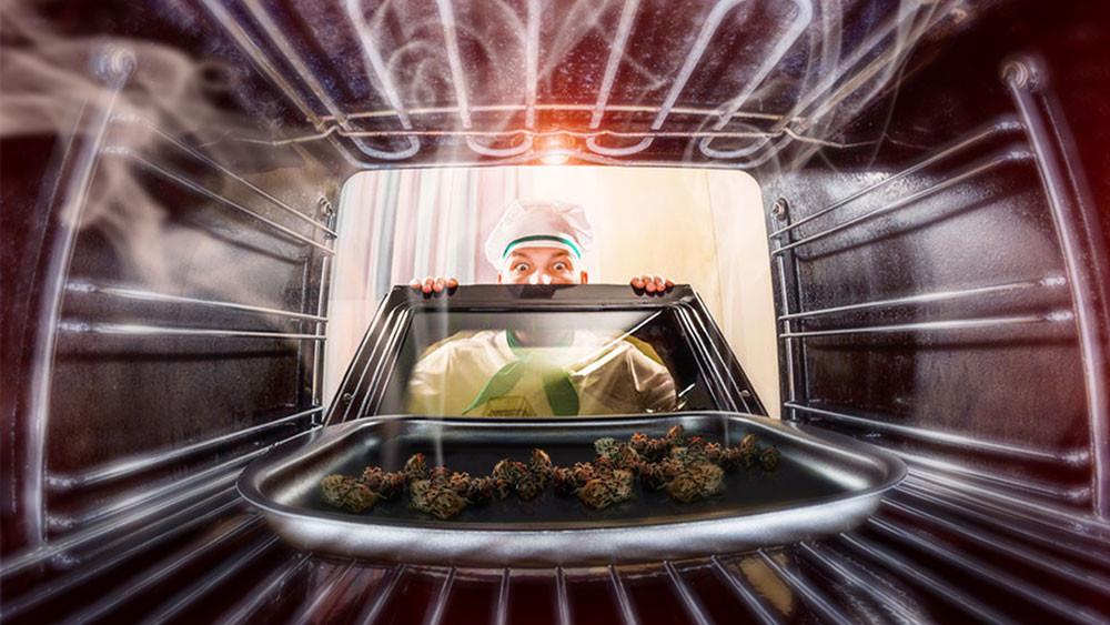 "alt=""Will eating raw weed get you high? cbh cbhindia india weed hemp edibles  cannabis community weedporn marijuana thc cbd stoner cannabisculture ganja hightimes indica life sativa kush maryjane highlife smoke high smokeweedeveryday dabs dank medical highsociety bong hemp stoned buy weed edibles mumbai best top quality hemp oil hemp seeds hemp fabric CBDproducts THCproducts"""