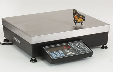 7600 Bench Scale