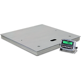 Electronic Floor Scales with Gas-Assisted Lift Decks