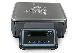 ZK810 High Resolution Digital Counting Scale